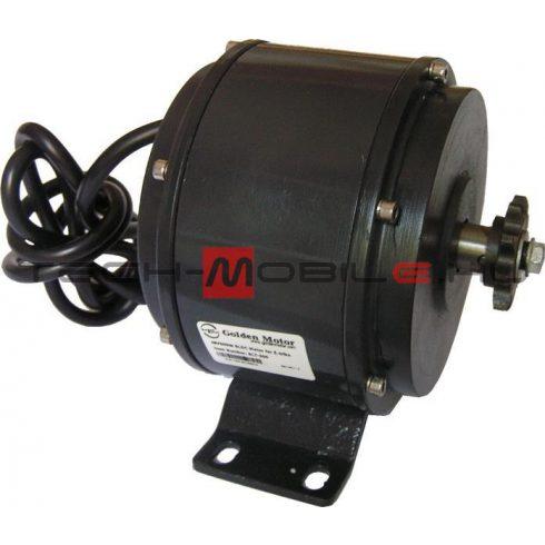 BLDC motor BM1318 48V/500W